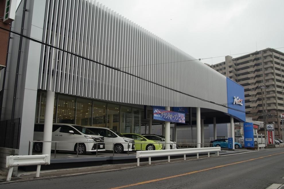 朝霞泉水店