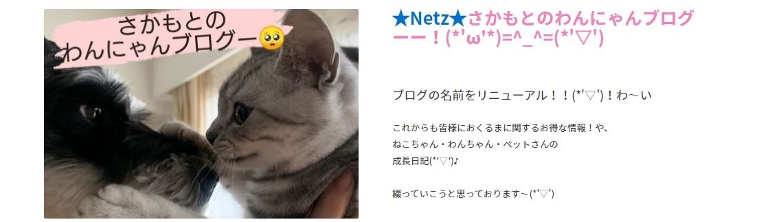 ネッツ新大阪,枚方山之上,新大阪,ネッツ,ブログ,猫,にゃんこ
